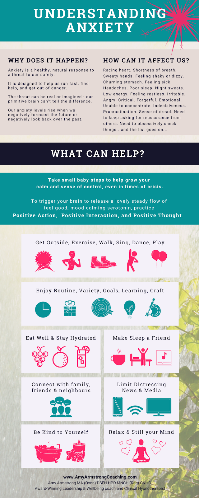 Understanding Anxiety infographic